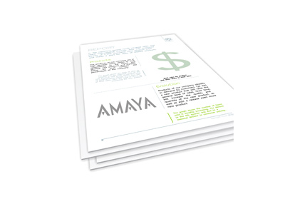 Amaya company report - Illustration
